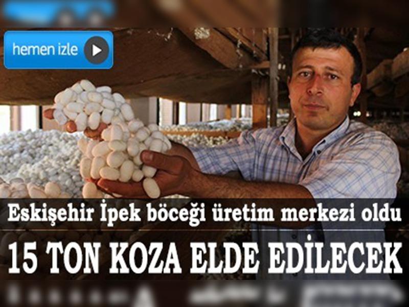 turkiye nin ipek bocegi merkezi