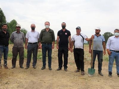 Devlet destek verdi, silajlık mısır üretimi 5 kat arttı